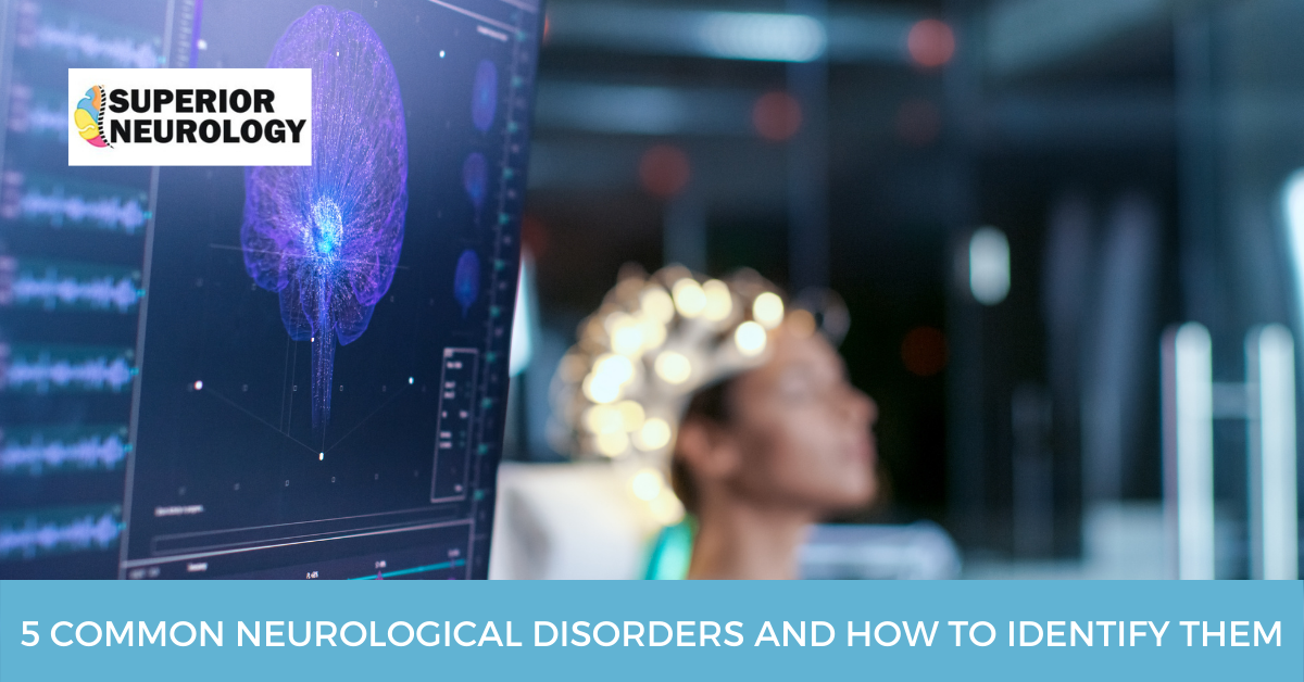 5 Common Neurological Disorders And How To Identify Them